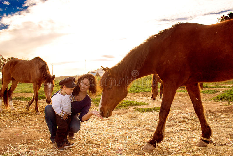 Barn med en häst royaltyfri foto