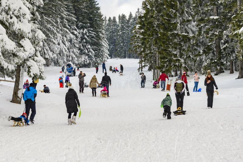 Barn med föräldrar som sledding och har gyckel på första vintersn royaltyfria bilder