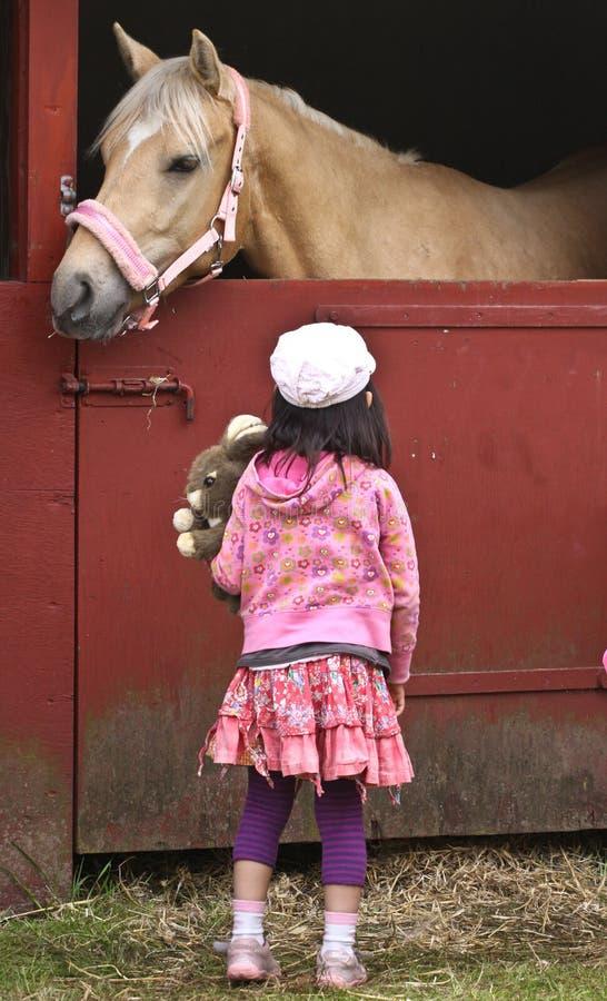 Barn med hästen arkivbild