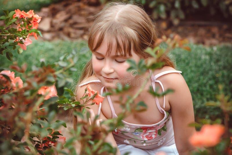 Barn med rosblomman i vårträdgård arkivbilder
