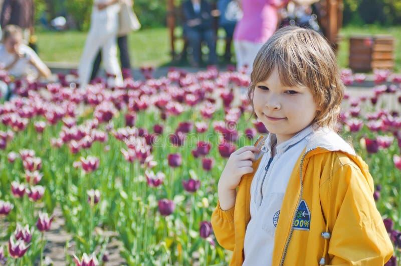 Barn och blommande tulpan royaltyfri foto