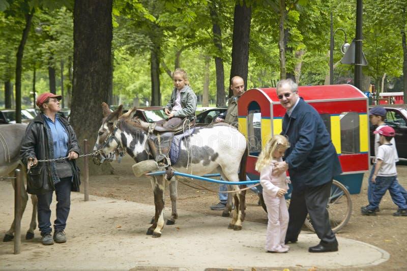 Barn och föräldrar på åsnan rider parkerar in, Paris, Frankrike royaltyfri foto