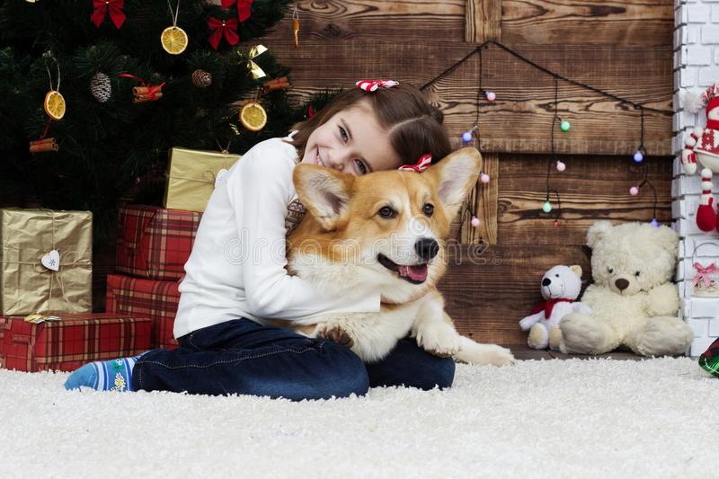Barn och hund arkivbild