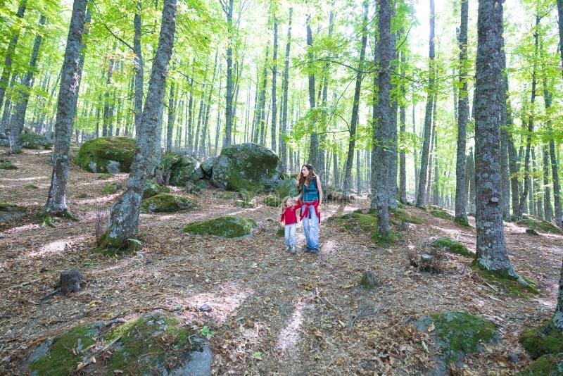 Barn och moder som går i skog royaltyfria foton