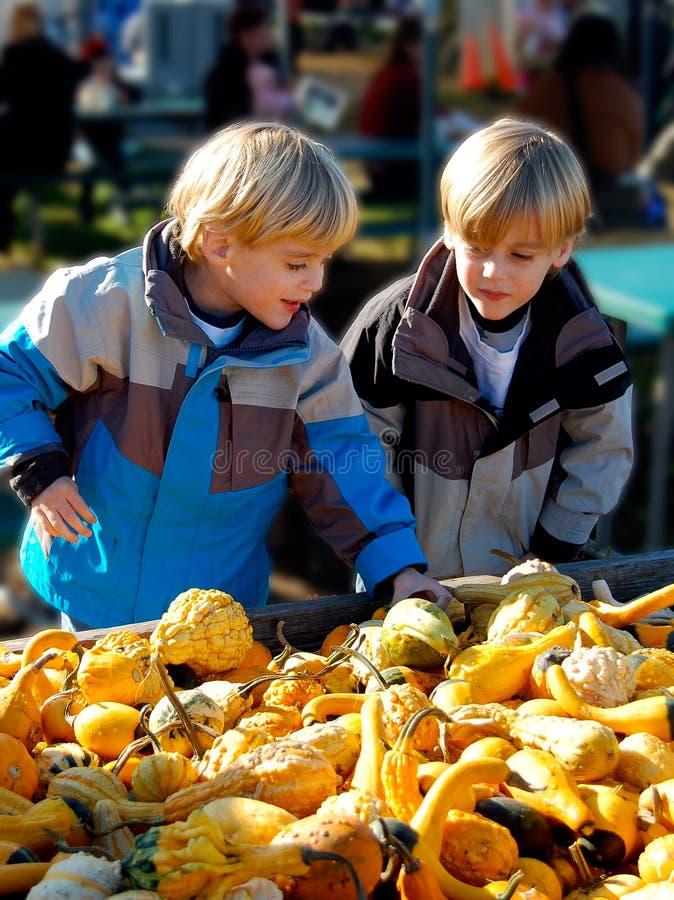 Barn på bondes marknad som väljer grönsaker vertikalt royaltyfria bilder