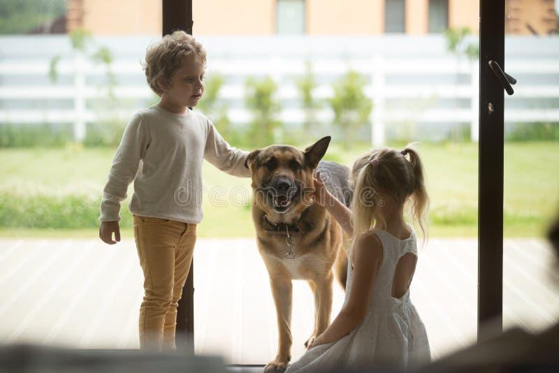 Barn pojke och flicka som spelar med hunden som kommer inom hus royaltyfria bilder