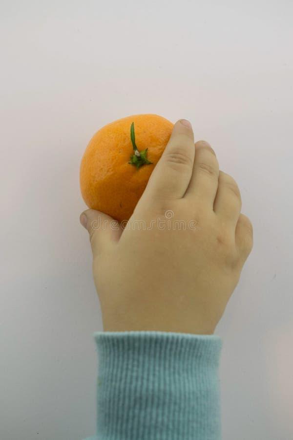 Barn räcker att nå för tangerin royaltyfria foton