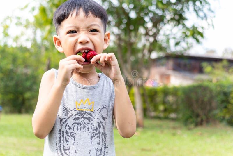 Barn som äter jordgubbar royaltyfri bild