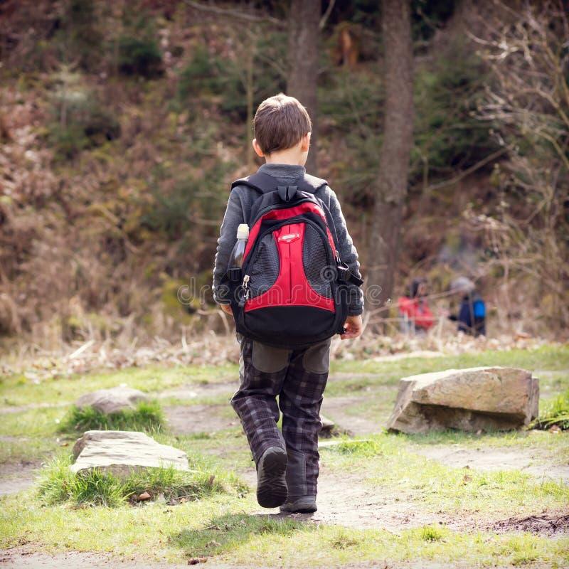 Barn som fotvandrar i skog fotografering för bildbyråer