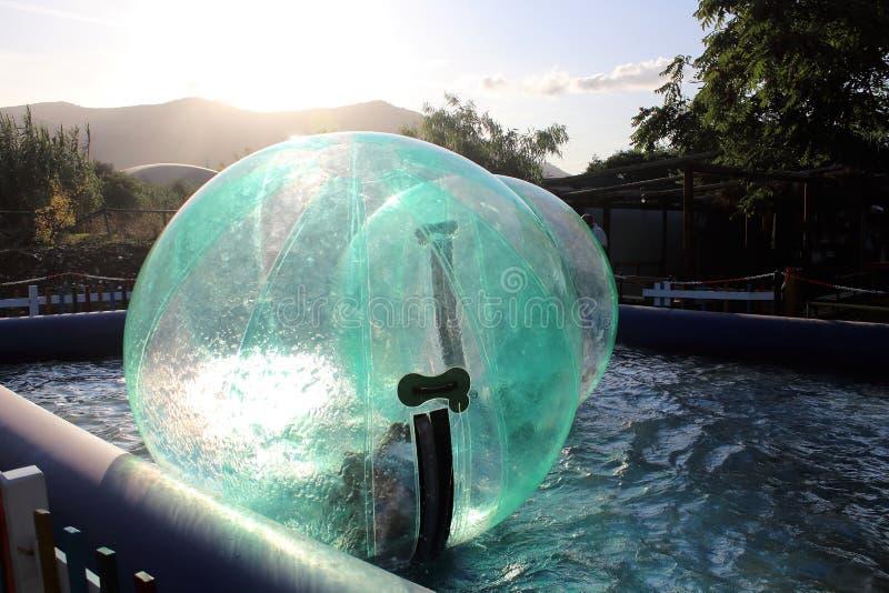 Barn som har kul i den uppblåsbara boll som flyter på vattnet i poolen royaltyfria foton