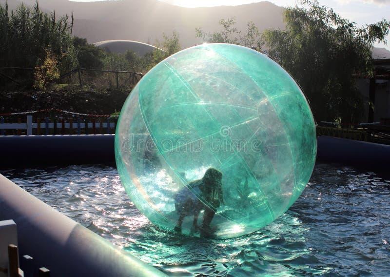 Barn som har kul i den uppblåsbara boll som flyter på vattnet i poolen royaltyfri bild