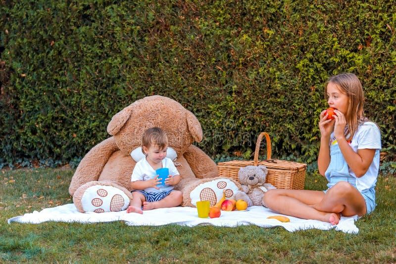 Barn som har picknicken med nalleleksaker i trädgård Lyckligt syskon som sitter på filten med korgen som äter frukt fotografering för bildbyråer