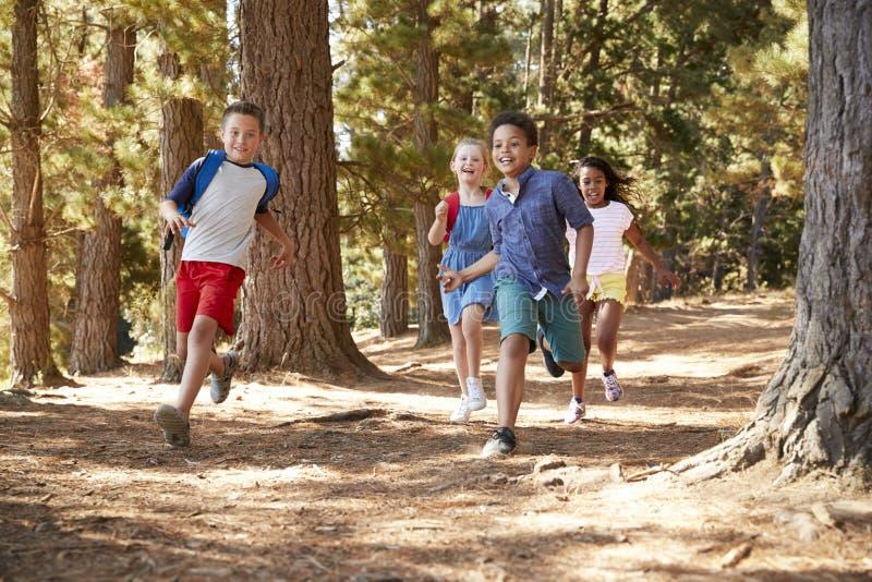 Barn som kör längs Forest Trail On Hiking Adventure arkivbild