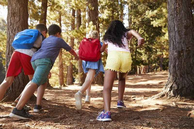 Barn som kör längs Forest Trail On Hiking Adventure royaltyfri bild