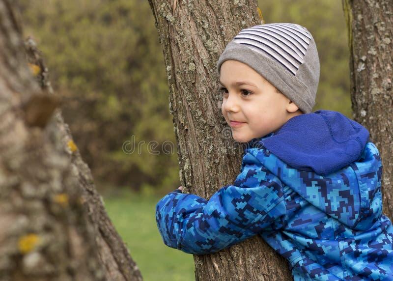 Barn som kramar och klättrar ett träd fotografering för bildbyråer