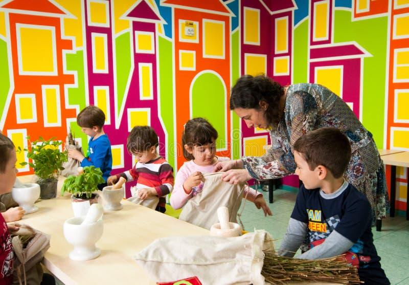 Barn som lär om växter på ett seminarium fotografering för bildbyråer