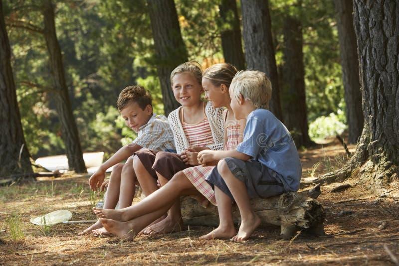 Barn som sitter i skog royaltyfria bilder