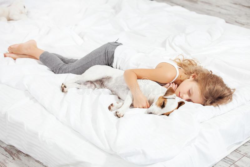 Barn som sover med hunden royaltyfri foto