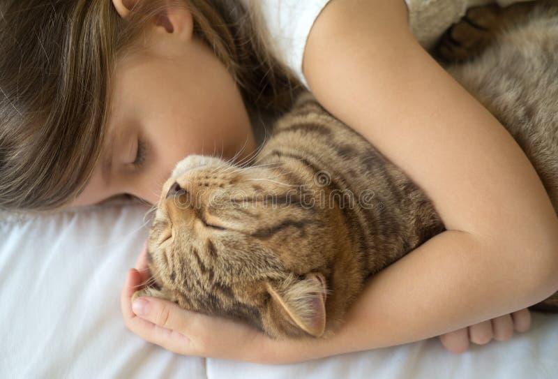Barn som sover med katten fotografering för bildbyråer