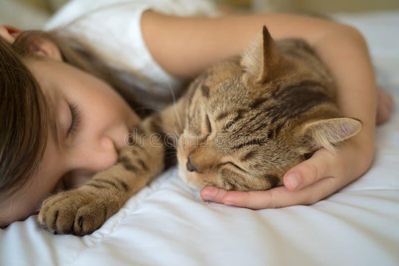 Barn som sover med katten arkivbilder