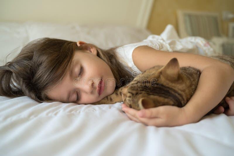 Barn som sover med katten arkivfoton