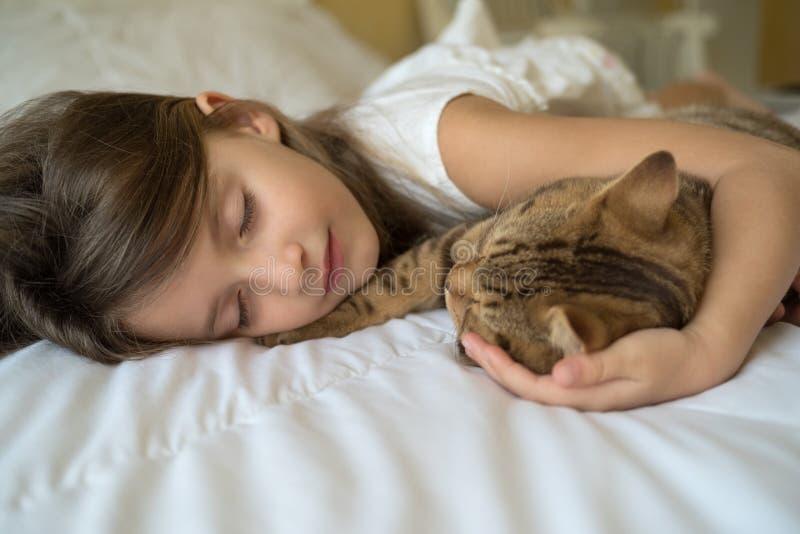 Barn som sover med katten royaltyfri fotografi