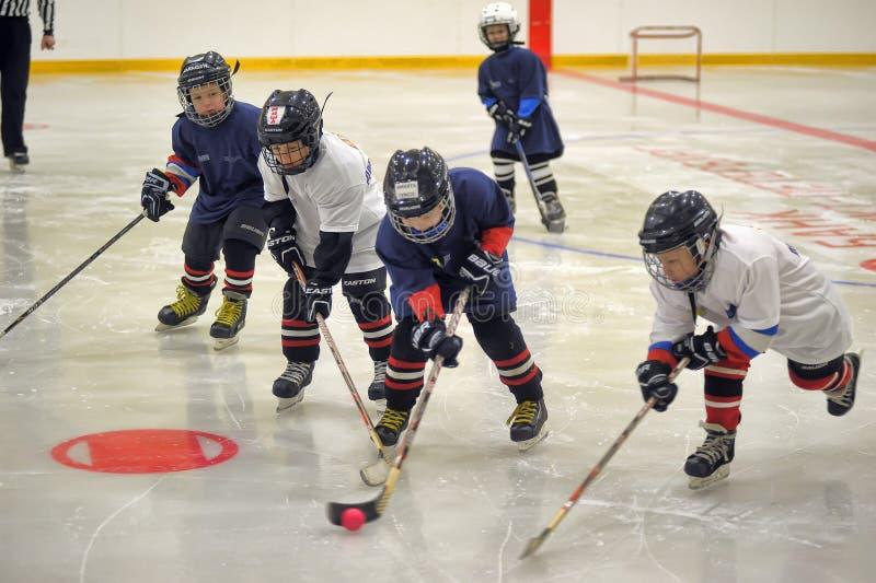 Barn som spelar hockey arkivfoton