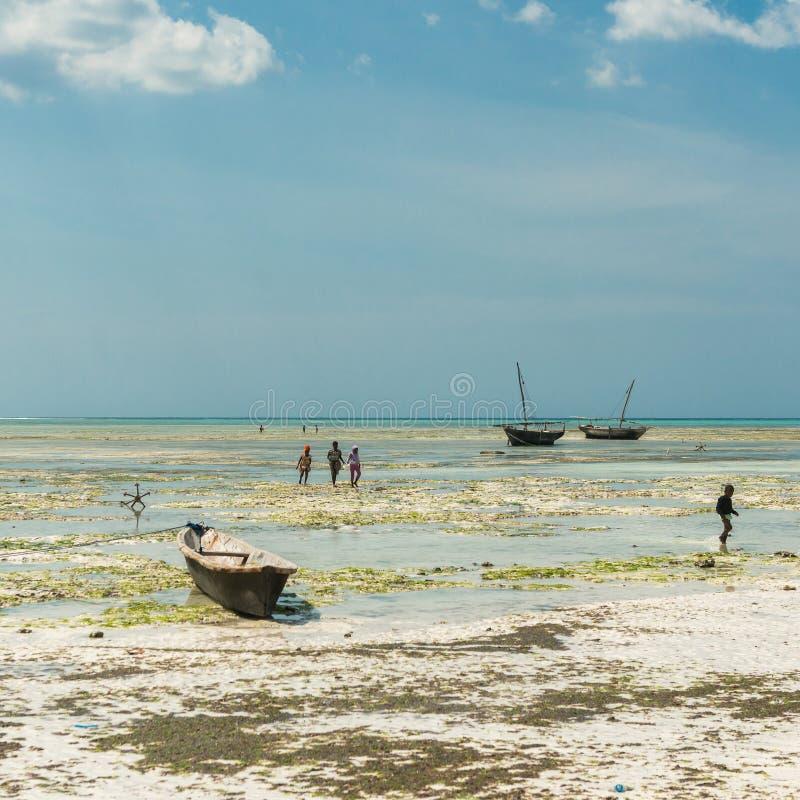 Barn som spelar på de grunda near fartygen, Zanzibar royaltyfri bild