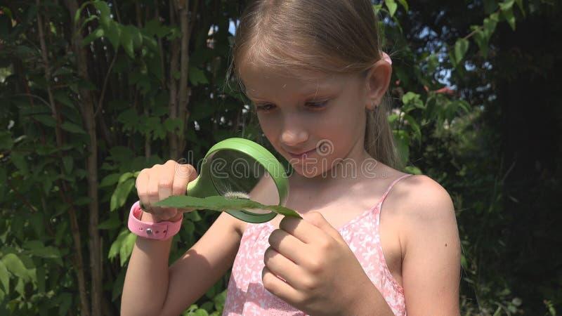 Barn som studerar en Caterpillar vid förstoringsapparaten som är utomhus- i naturen, spela för skolflicka arkivfoton