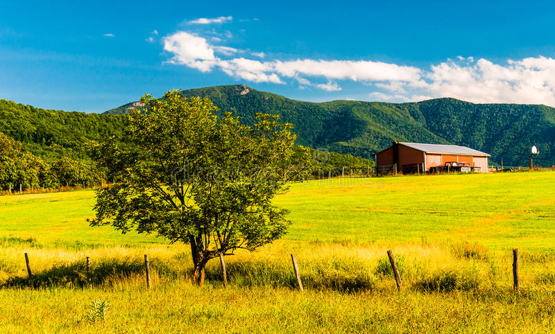 Barn, tree and view of the Appalachians in the Shenandoah Valley. Virginia stock photos