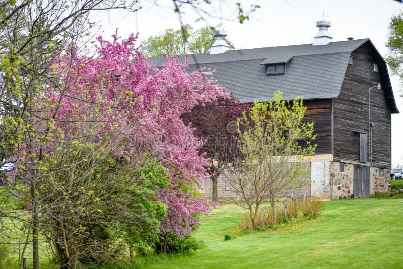 Barn at White River County Park - Walworth County royalty free stock photos