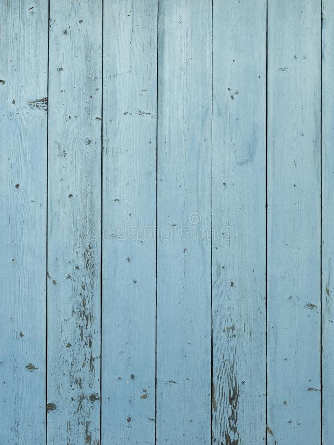 Barn wood wall with distressed, peeling blue paint royalty free stock images