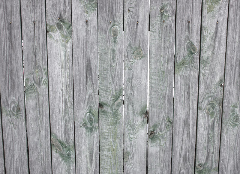 Barn Wooden Wall Planking Wide Texture. Old Solid Wood Slats Rustic Shabby Horizontal Background. Paint Peeled Grungy Weathered Is. Olated Surface. Faded Natural stock photo
