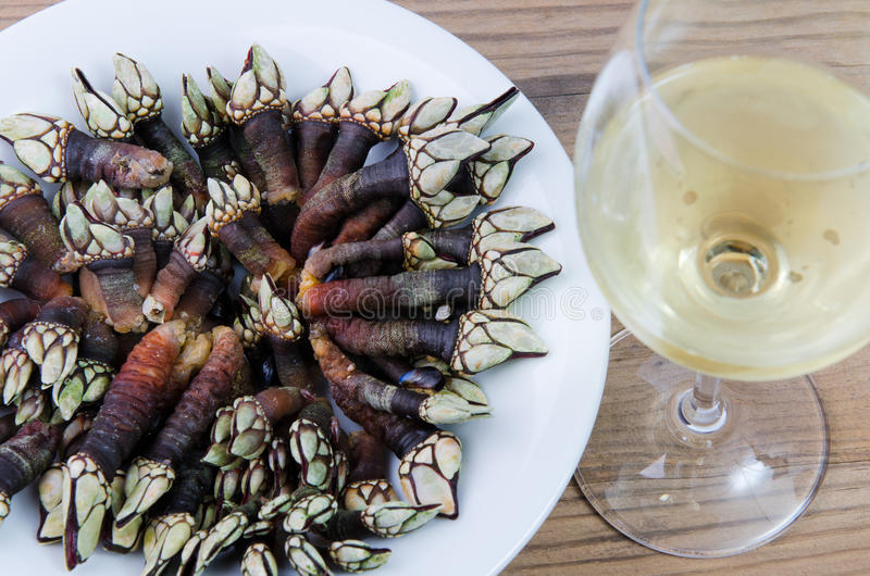 Barnacles and wine royalty free stock photography