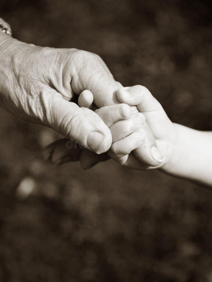 barnbarnmorföräldern hands holdingen royaltyfri bild