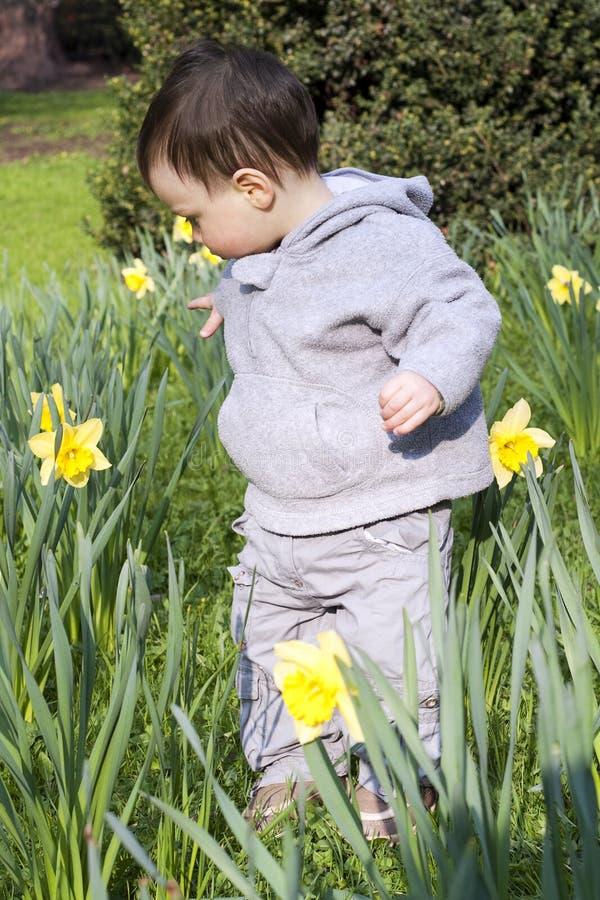 Barnblommaträdgård royaltyfria bilder
