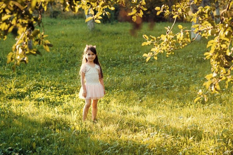 Barndom ungdom, harmlöshet Liten flickalek på grönt gräs i sommar parkerar, semestrar royaltyfri bild