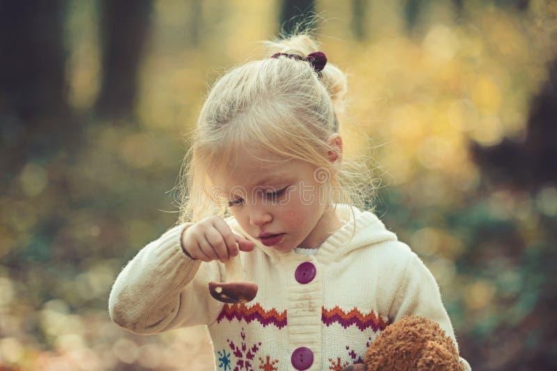 Barndomaktivitet och aktiv vilar utomhus- Barn med den nya champinjonen i champinjoner för skörd för höstskogliten flicka in royaltyfri bild
