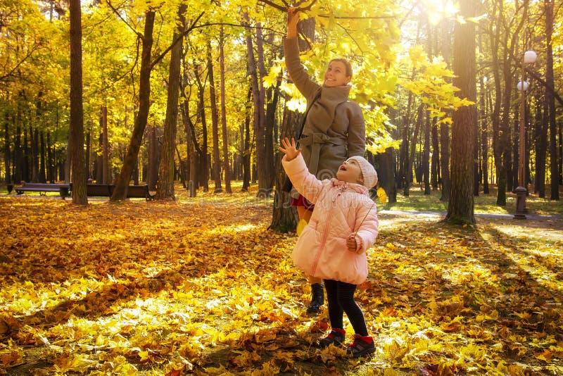 Barnet fostrar, och den lilla dottern i höst parkerar lek med gula sidor Lycklig helg med familjen i höstliga Forest Park royaltyfria bilder