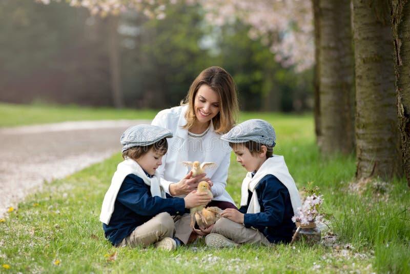 Barnet fostrar och hennes två barn, pojkar som spelar med liten bab arkivfoton