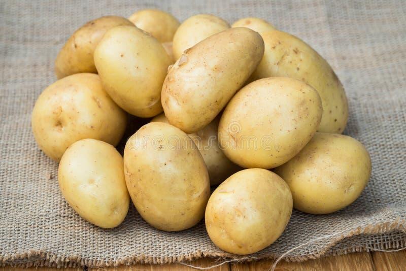 Barnet gulnar potatisar på säckväv royaltyfri fotografi