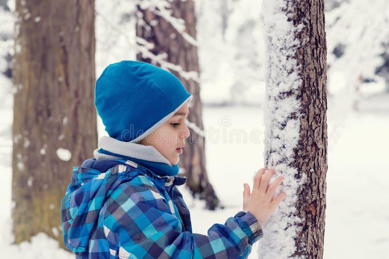 Barnet i en vinter parkerar eller skogen arkivfoton