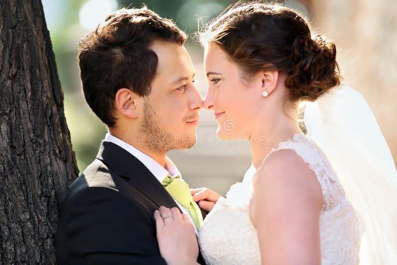 Barnet kopplar ihop, når de har gifta sig i en kramframsida - till - framsidan arkivfoton