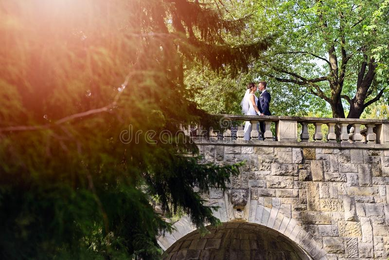 Barnet kopplar ihop på bron i parkera arkivbild