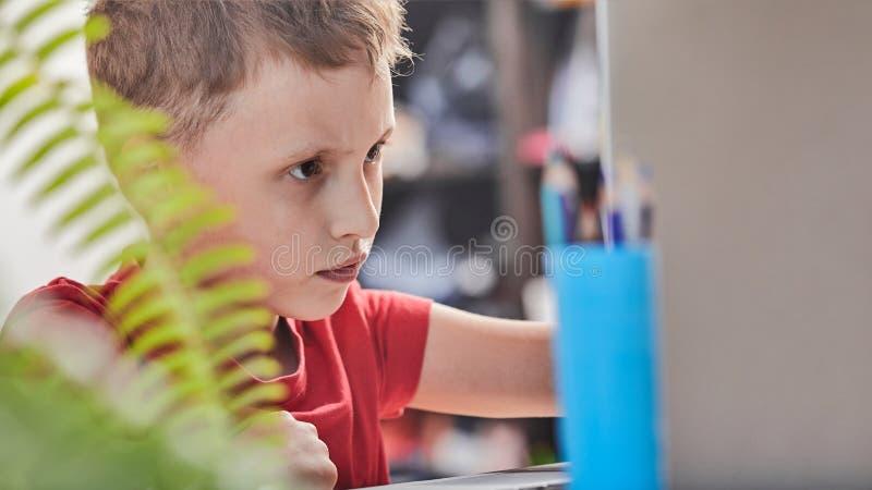 Barnet söker efter information på internet till och med en bärbar dator själv-studie hemma och att göra läxa Fast beslutsamt läsa arkivfoton