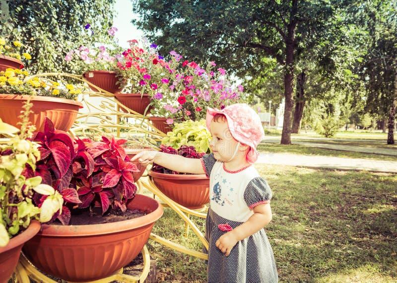 Barnet ser blommor royaltyfri foto