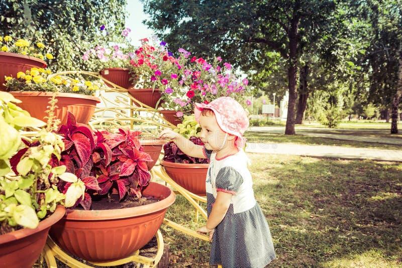 Barnet ser blommor royaltyfria foton