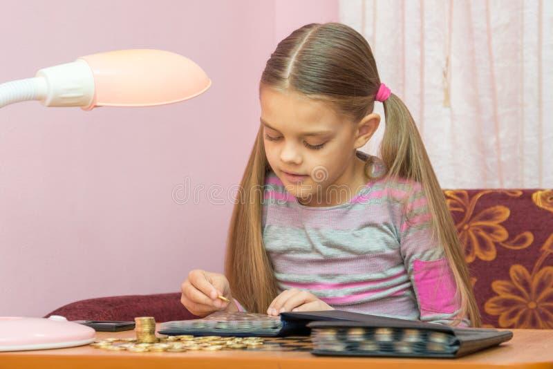 Barnet ser ett myntalbum för collectibles royaltyfri bild
