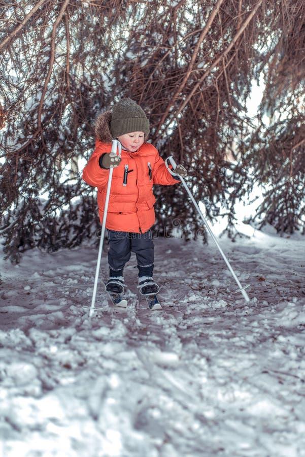 Barnet skidar, lite pojken av 3-6 gamla år, i vinter i ett Forest Park, i barn skidar Första steg in arkivfoto