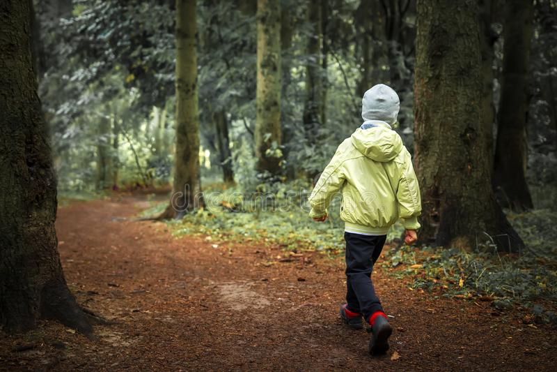 Barnet som är borttappat i skogpys, går i grönt fotvandra för skog Barn i utomhus- i skogsmark Ensam pojke i skog arkivfoton